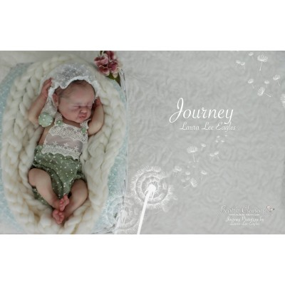 JOURNEY by LAURA LEE EAGLES