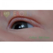 SMALL IRIS - Ultra Newborn Glass Eyes - Ash Green